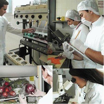 Ingeniería industrial alimentaria
