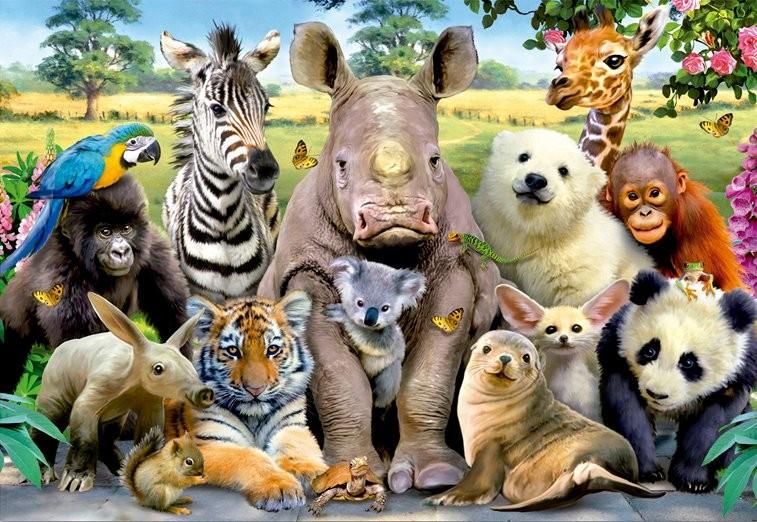 biología animal