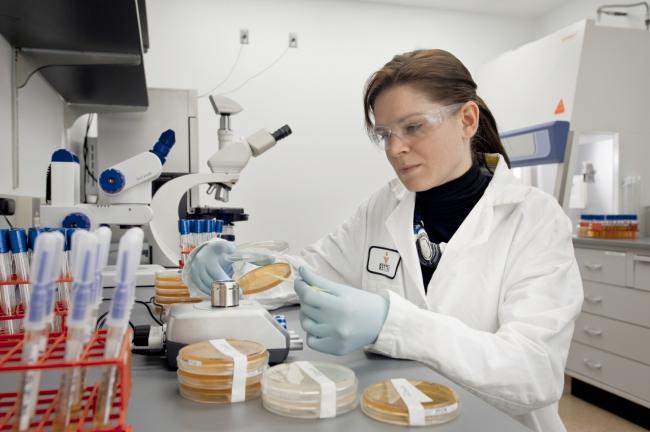 microbilogía