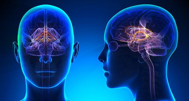 Cuál es la definición de neurología