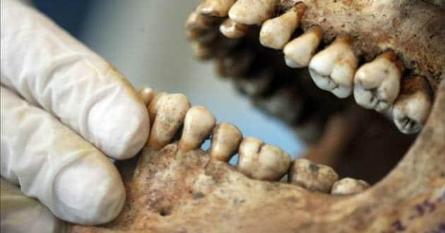 Qué es la odontología forense