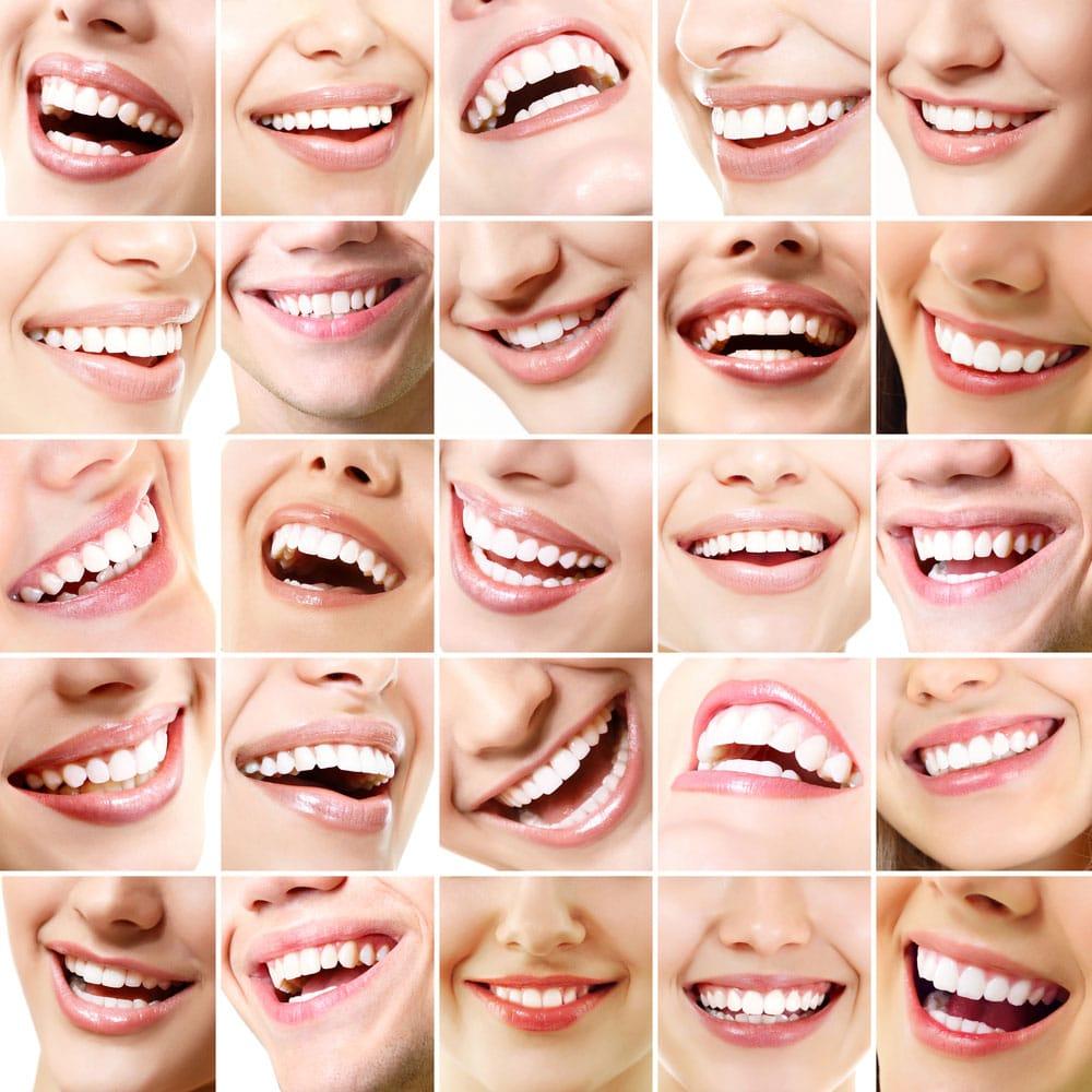 dia del ortodoncista